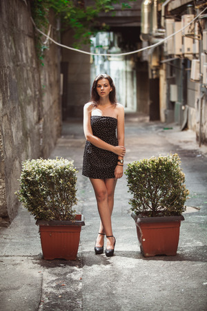Beautiful young woman in dress posing on street between bushes in pots photo