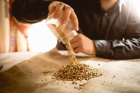 emptying: Closeup photo of male miner emptying jar with golden nuggets