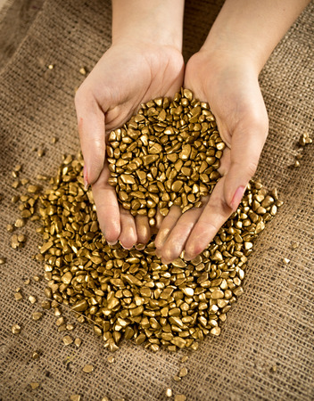 Conceptual photo of handful of golden nuggets photo