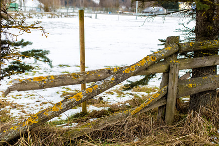 pasture fence: Old wooden broken fence at farm in winter