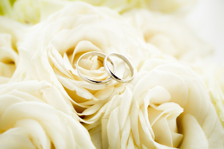 Macro photo of two golden wedding rings lying on white rose photo