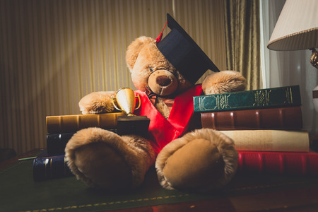doctoral: Toned photo of teddy bear in graduation cap sitting at library Stock Photo