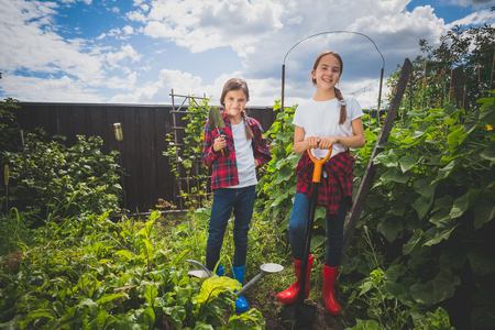 gum boots: Toned photo of two young sisters working at backyard garden
