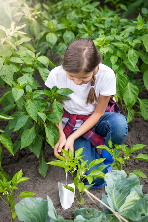 Young girl digging earthing soil at vegetable garden bed