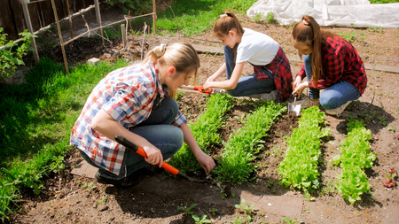 Photo of beautiful young woman working at garden with her daughters Stock Photo
