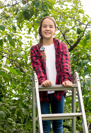 Beautiful brunette girl in checkered shirt standing on top of stepladder at orchard Stock Photo
