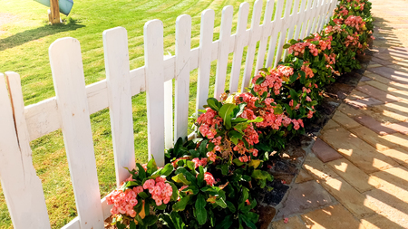 Closeup photo of beautiful white wooden fence and flowerbed at garden