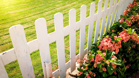 Closeup photo of beautiful flowerbed, green lawn and white wooden fence at garden Reklamní fotografie