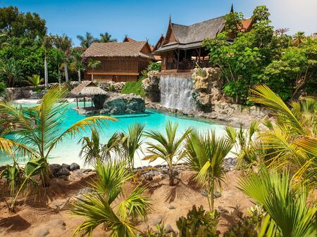 Beautiful image of palm trees growing on the edge of swimming pool on tropical adian island