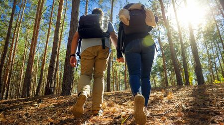 Rear view image of young man holding his wife by hand while travelling and hiking in forest