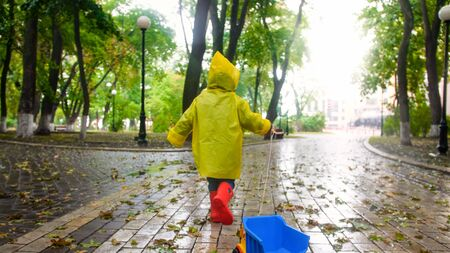 Rear view photo of little boy pulling toy truck by rope on rainy day at autumn park