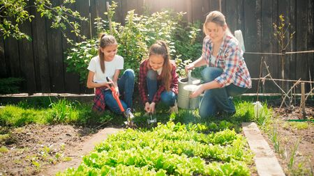 Two girls helping their mother working in garden and watering vegetables 免版税图像