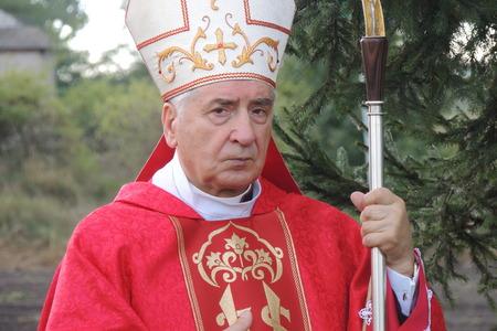 archbishop: PLONKOWO - SEPTEMBER 29: Jozef Kowalczyk, Metropolitan Archbishop of Gniezno, the Primate of Polish, Establishment of a sanctuary September 29, 2013 in Plonkowo, Poland