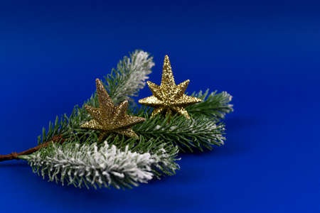 Green Christmas tree branches with colorful Christmas decorations.