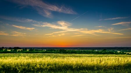 Beautiful summer sunset rural meadow or field in countryside Standard-Bild