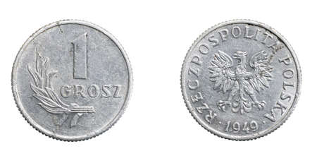 one Polish grosz coin on a white isolated background