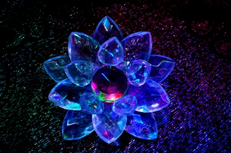 shined: Flower from transparent plastic shined in darkness Stock Photo
