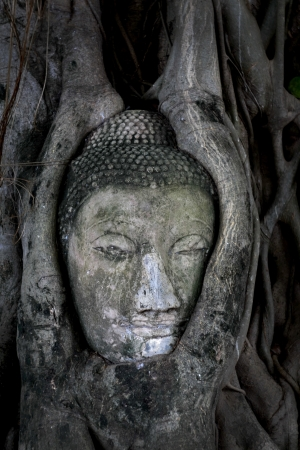 savant: Buddha image Stock Photo
