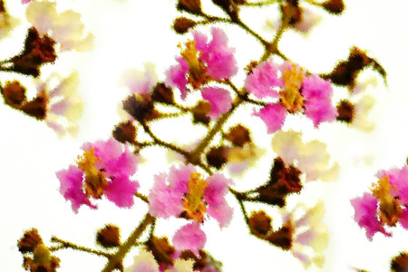 art of painting flower on white background