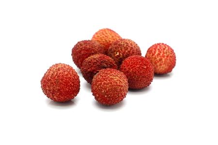 fresh red lychee on white background