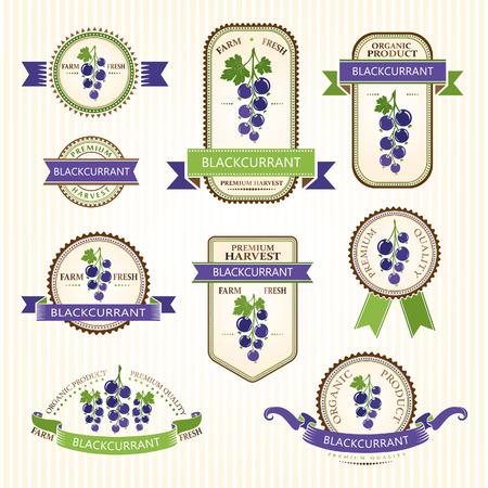 Schwarze Johannisbeere Etiketten. Obst-Etiketten und Aufkleber Sammlung. Vektorgrafik