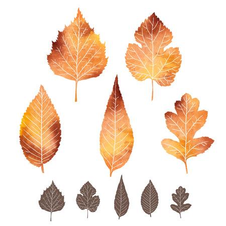 Conjunto de iconos de las hojas de otoño con la textura de la acuarela Ilustración de vector