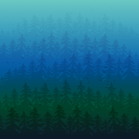 overlook: Fir forest in the fog. Dark nature background Illustration