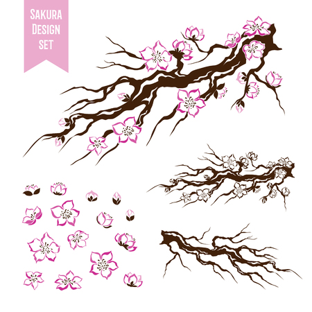 blossoming: Sakura. Blossoming cherry tree branch. Stencil style. Graphic vector decorative elements.