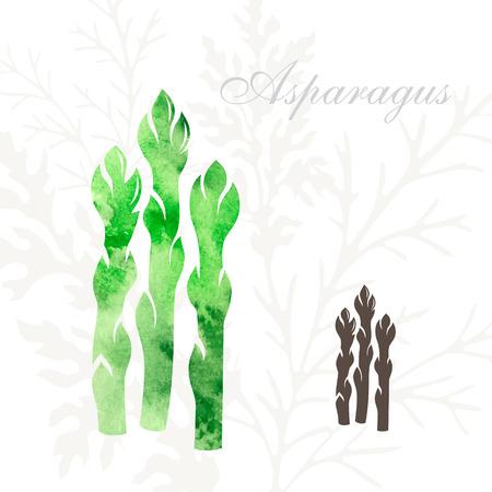 Szparagi ustawić ikony. Warzywa ikona z akwarelowy tekstury