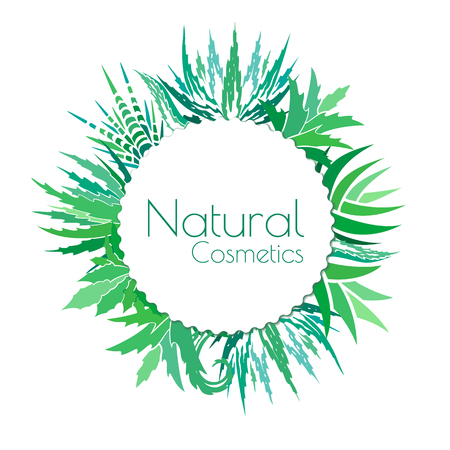 aloe vera plant: Aloe vera banner template. Label for natural and organic cosmetic products. Vector background with copy space. Illustration