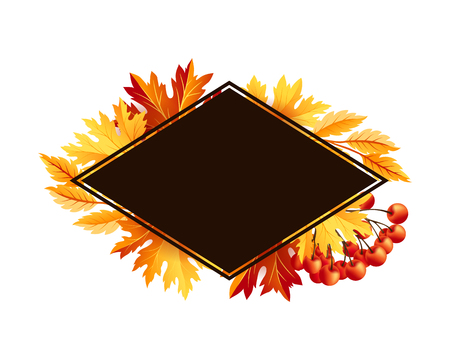 rowanberry: Autumn fall maple tree leaves with rowanberry card. Rhombus frame with copy space. Vector banner template. Illustration