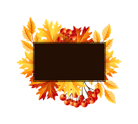 rowanberry: Autumn fall maple tree leaves with rowanberry card. Square frame with copy space. Vector banner template. Illustration