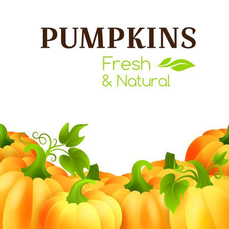 package design: Pumpkins. Vegetarian banner. Decorative border for package design. Illustration