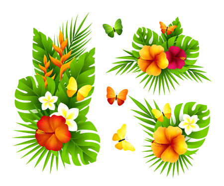 Tropical design elements with palm leaves, flowers and butterflies.