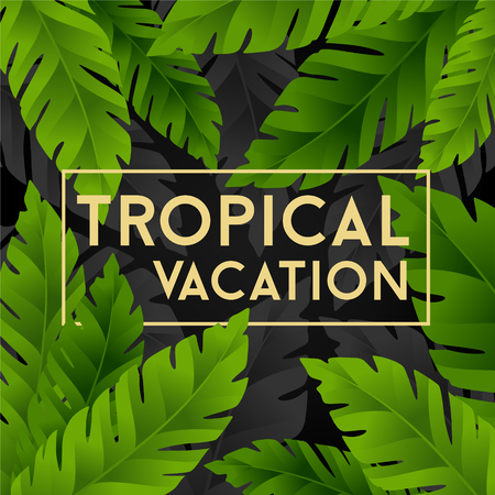 lush foliage: Tropical vacation card with banana palm leaves. Jungle leaves background.