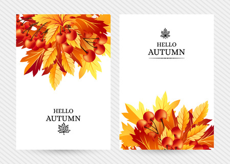 rowanberry: Autumn background with fall maple tree leaves and rowanberry. Vertical vector  invitation banners with season foliage decorations and copy space Illustration