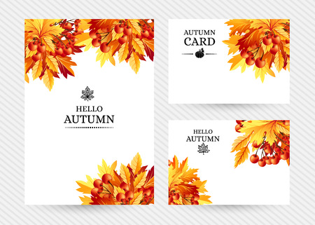 rowanberry: Autumn background with fall maple tree leaves and rowanberry. Vector  banners with season foliage decorations and copy space