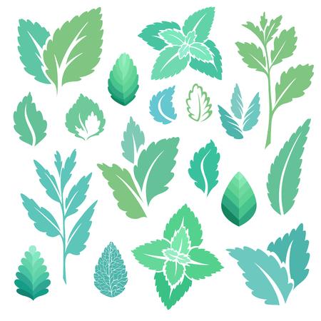 Mint leaves and branches icons set. Vector illustration Ilustração