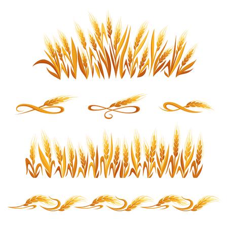 小麦の耳の装飾です。白い背景の分離された穀物の穂のシンボル。パン包装、ビール ラベルまたは有機穀物製品のデザイン要素  イラスト・ベクター素材