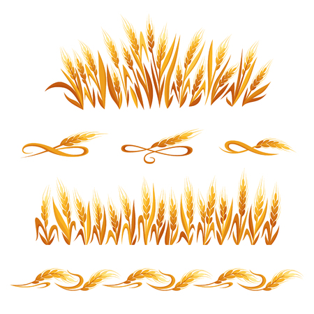 Wheat ears decorations. Cereal spikelets symbols isolated on white background. Design elements for bread packaging, beer label or organic grain products,