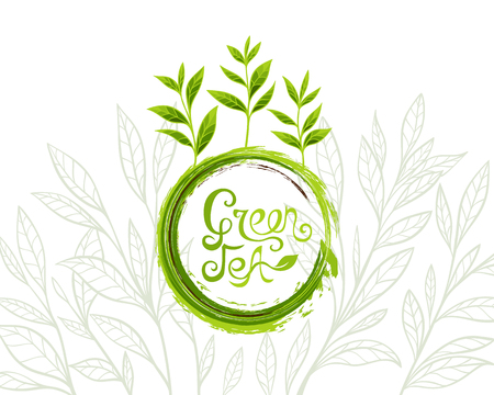Green tea banner with ink grunge lettering design element and leaves in line art style