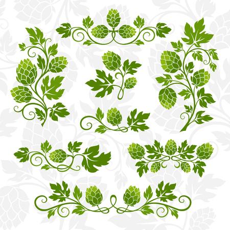 Hop Dekorationselemente. Trennwände, Zweige mit Blättern und Hopfenzapfen. Standard-Bild - 84350443