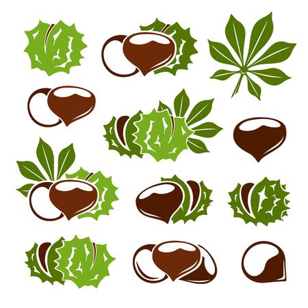Kastanjes icoon collectie. Noten met bladeren vectorsymbolen in stencilstijl.