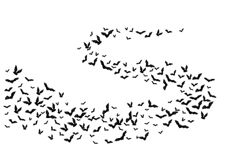 Halloween flying bats. Decoration element from scattered silhouettes.  Swirl wavy path Illustration