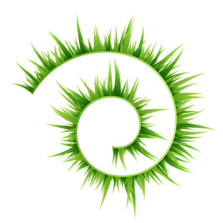 Green grass decorative elements. Spiral curve. Vector illustration