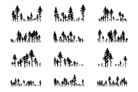 Ink hand drawn forest vector illustration set 일러스트