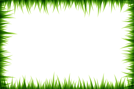 Green grass decorative elements. Frame with copy space. Vector illustration
