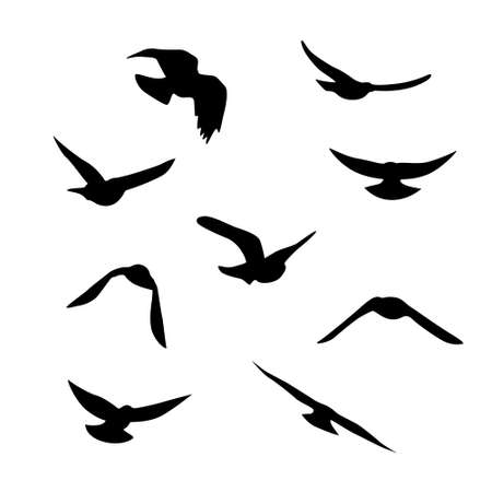 Flying birds silhouettes collection. Decoration elements Vector Illustratie