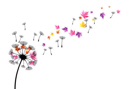 Dandelion with flying colorful autumn leaves and seeds. Vector decoration from scattered elements. Colorful isolated silhouette. Conceptual illustration ..