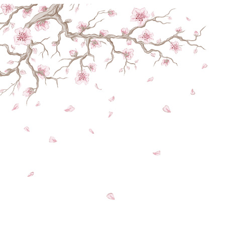 Hand drawn cherry blossom branch with flying petals  Vector